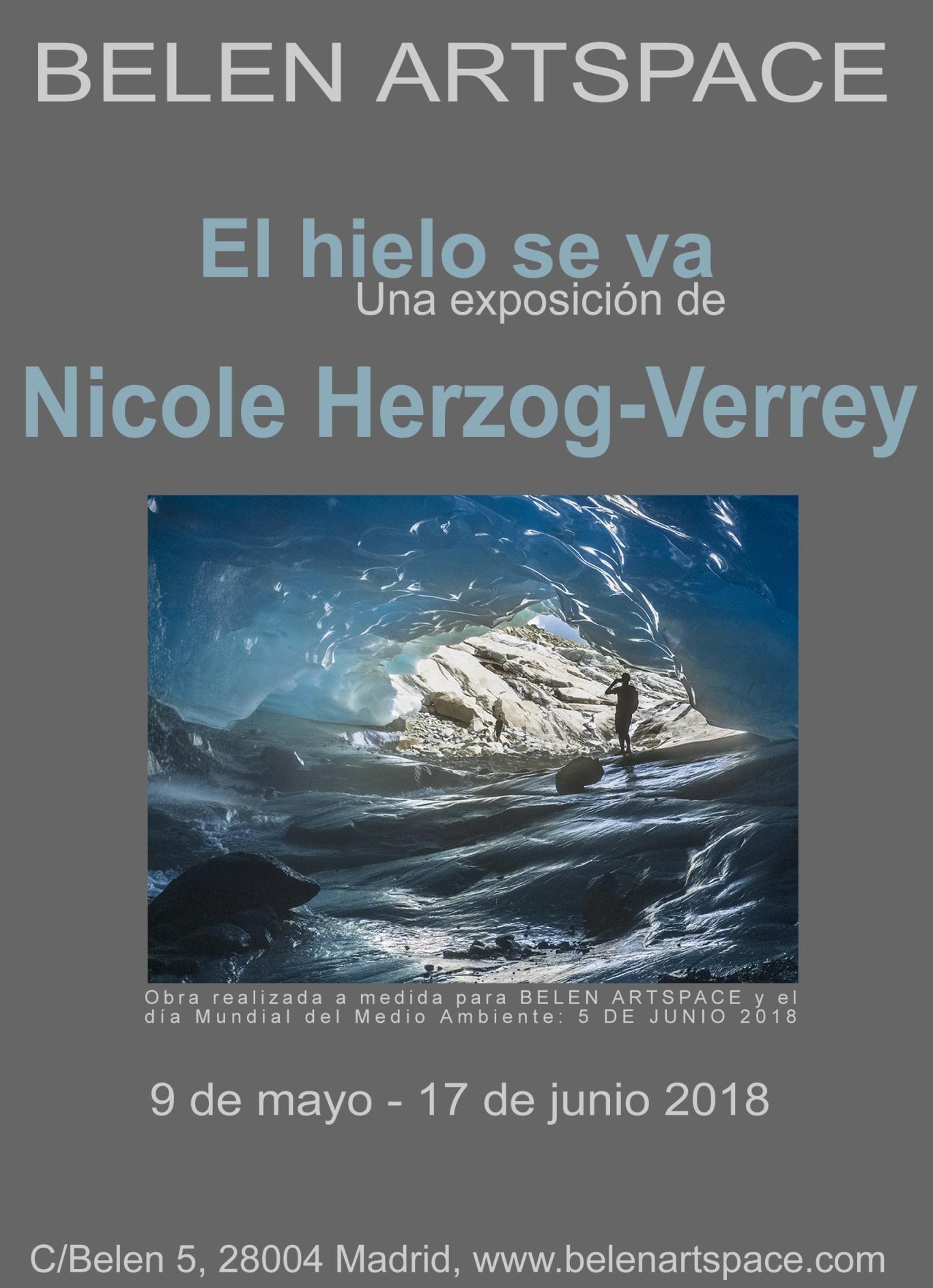 Nicole Herzog Verrey, el hielo se va,Dia mundial, ambiente,glacial,exposiciones, Belen Artspace