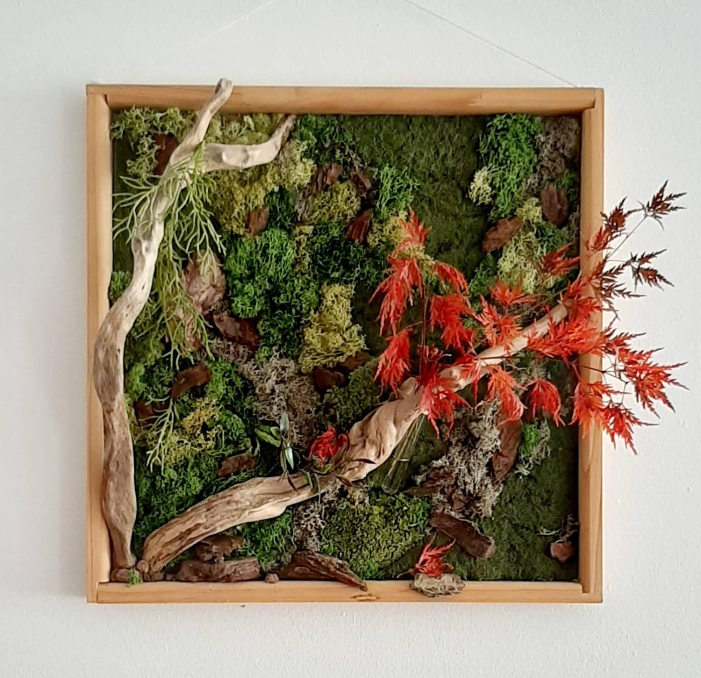 Cercis, estructuras, vegetales,arte,floral,vegetal,kunst,instalation,belenartspace